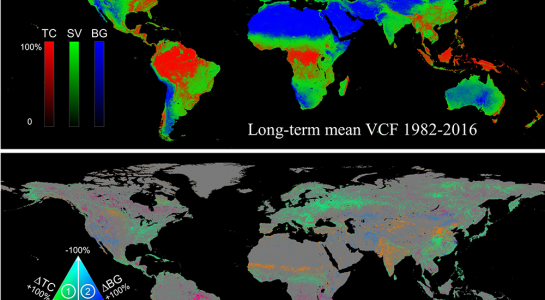 Long term Global Land Change